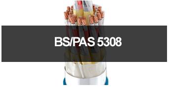 banner-bspas